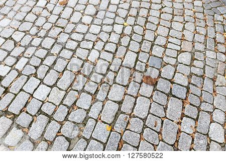 stone tiles on the road for pedestrian traffic, close up