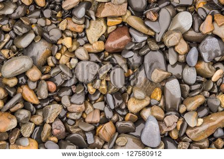 Background Texture Of Wet Sea Pebbles Of Medium Size