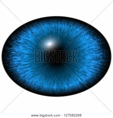 Elliptic blue eye, dark iris, reflection in eye