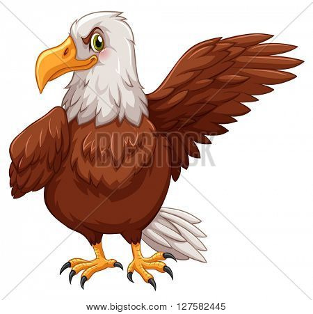 Eagle standing on white background illustration