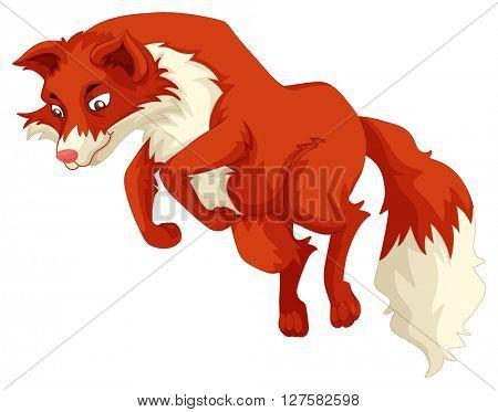 Red fox jumping up illustration