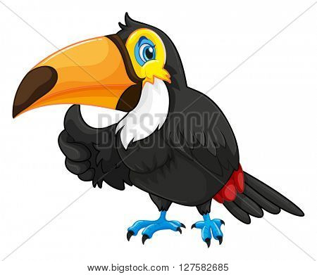 Toucan with happy face illustration
