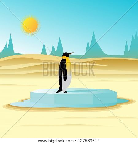 global warming. The thawing ice floe in the desert and a penguin, against dunes and ice rocks