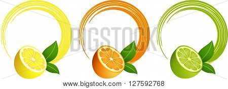 Scalable vectorial image representing a citrus fruit round frame, isolated on white.