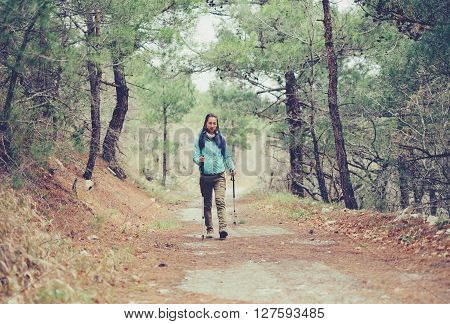 Hiker young woman with trekking poles walking on footpath among pine trees in the forest