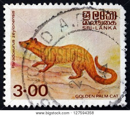 SRI LANKA - CIRCA 1983: a stamp printed in Sri Lanka shows Golden Palm Civet Paradoxurus Zeylonensis is a Palm Civet Endemic to Sri Lanka circa 1983