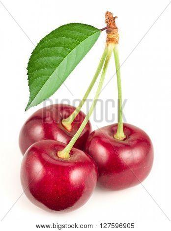 Three ripe red cherries on the white background.
