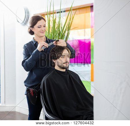 Hairdresser Cutting Customer's Hair In Salon