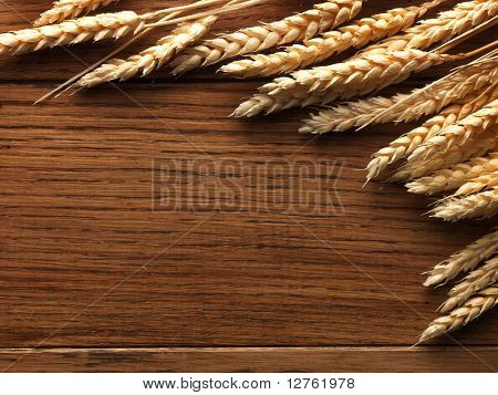 Wheat spikes on dark wooden board