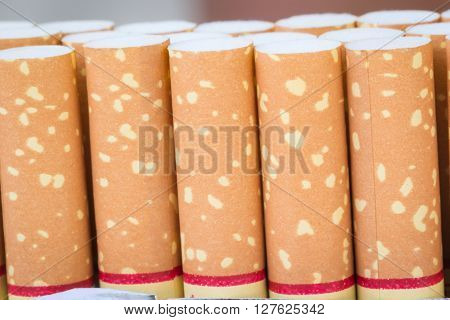 Roll cigarettes several rolls arranged upright as a group.
