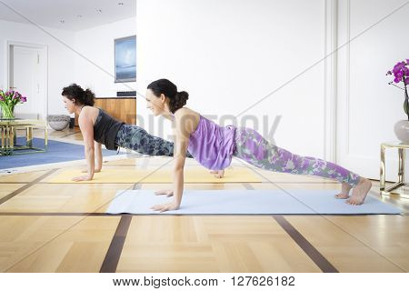 Two women doing yoga at home plank pose