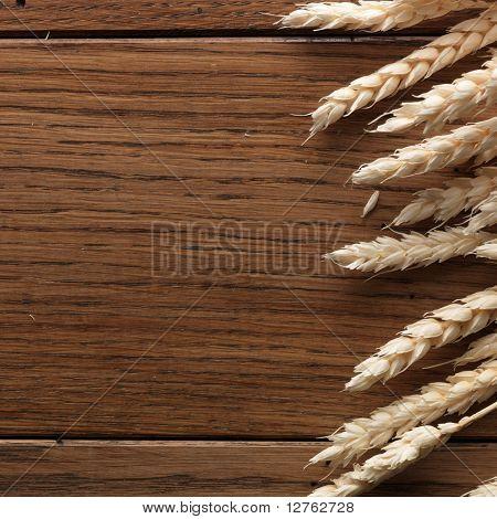 Wheat spikes on dark wooden board