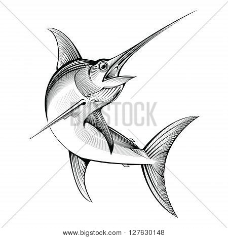 vector tropical swordfish. line engraving illustration fish