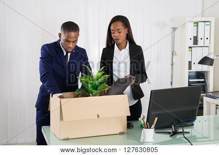 Two Businesspeople Packing Plant And Folders In Cardboard Box