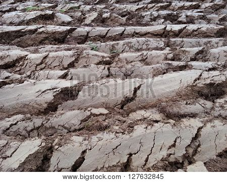 Deep Ploughed Cultivated Land Soil