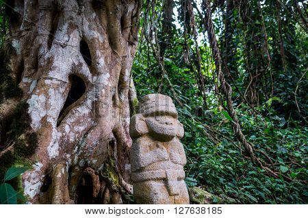 San Agustin, Colombia: A mysterious statue of a male person stands in the rainforest next to an old tree with large roots. The statues of San Agustin are a mystery to historians.