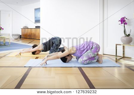 An image of two women doing yoga at home Balasana variation