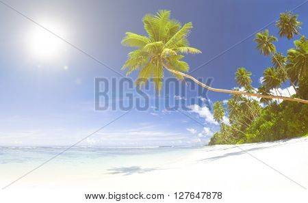 Tropical Beach Destination Concept