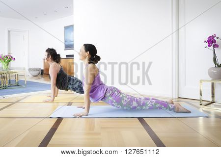 Two women doing yoga at home upwards looking dog pose