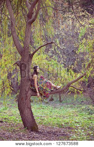 Hippie girl on a willow tree branch