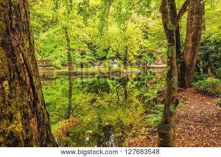 Alfred Nicholas Memorial Gardens Lake In Autumn
