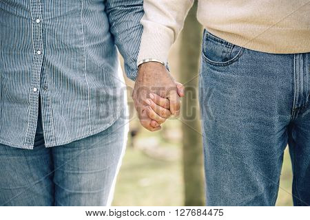 Close up of senior couple holding hands over nature background