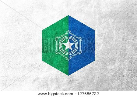 Flag Of Sapporo, Japan, Painted On Leather Texture