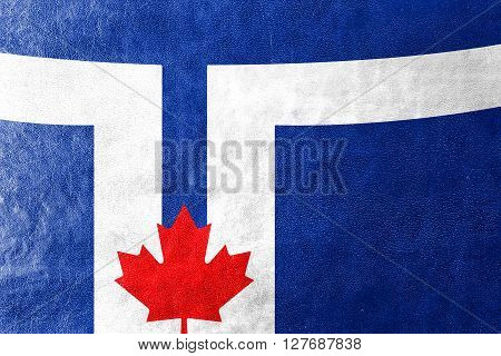 Flag Of Toronto, Painted On Leather Texture