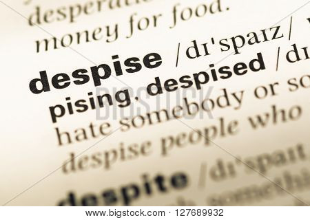 Close Up Of Old English Dictionary Page With Word Despise.