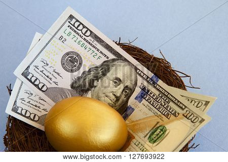 American dollars and a golden egg in a bird's nest.