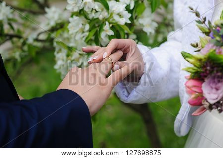 Groom and bride holds wedding ring. Wedding concept. Bride gives an engagement ring to her groom. Wedding day. Focus on hand and ring. Blossoming flowering branch on background. outdoors.