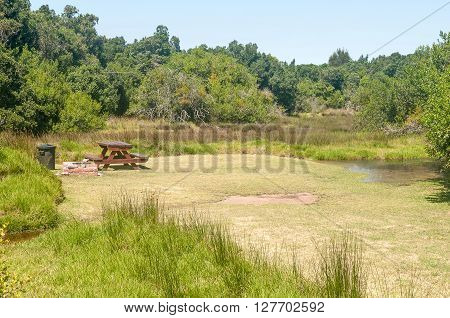 NATURES VALLEY SOUTH AFRICA - MARCH 2 2016: Wetland in the Groot River at the De Vaselot Camp at the town of Natures Valley