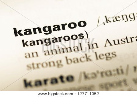 Close Up Of Old English Dictionary Page With Word Kangaroo.