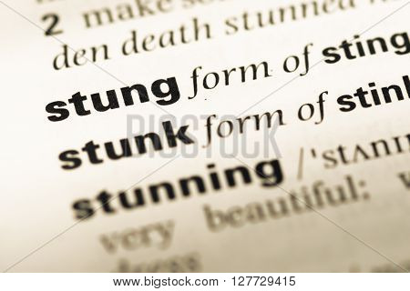 Close Up Of Old English Dictionary Page With Word Stung.