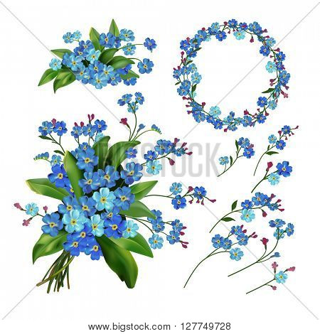 The set of Forget me not flowers. Spring  illustration.? Isolated on white. Spring flowers.