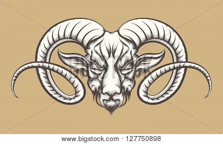 Head of A Ram drawn in tattoo style. Isolated on monochrome.
