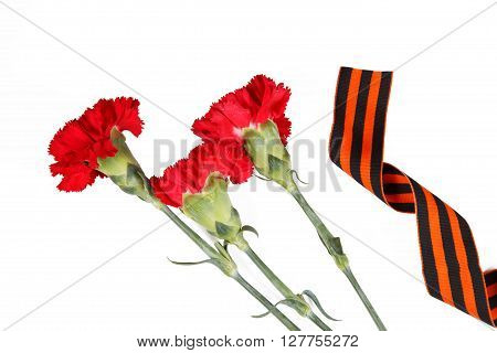 St George ribbon and red carnations 9 May still life. Symbols of Victory in Great Patriotic War. isolated on white.