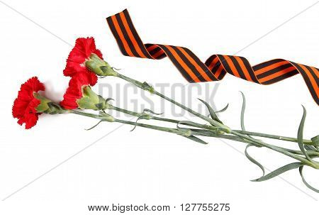 Ñarnations And St. George's Ribbon Isolated On White. Symbols Of Victory In Great Patriotic War