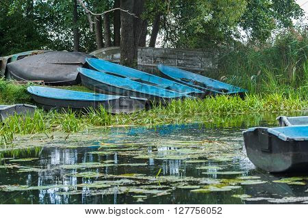 Landscape with old wooden rowing blue boats are landing on green riverbank