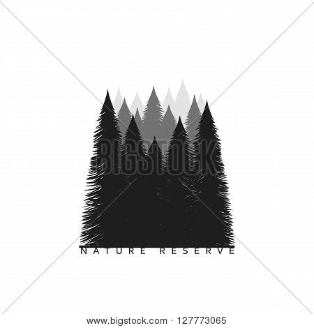 Tree silhouette isolated on white background  Image of nature. Tree Silhouette. Camping Background.