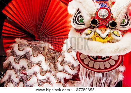 Traditional colorful Chinese new year lion with red fan as background