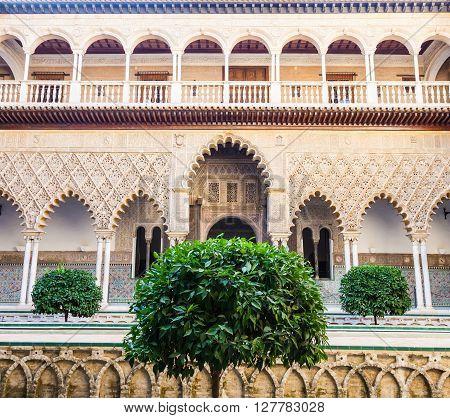 Seville Alcazar Garden