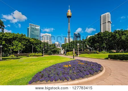 Sydney Australia - November 8 2014: View at Sydney Moore Park tower and modern buildings in the background in the Sydney state of New South Wales Australia.