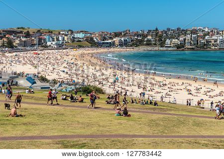Sydney Australia - November 8 2014: Bondi Beach is crowded with a large number of beachgoers on a hot Saturday afternoon Sydney Australia.