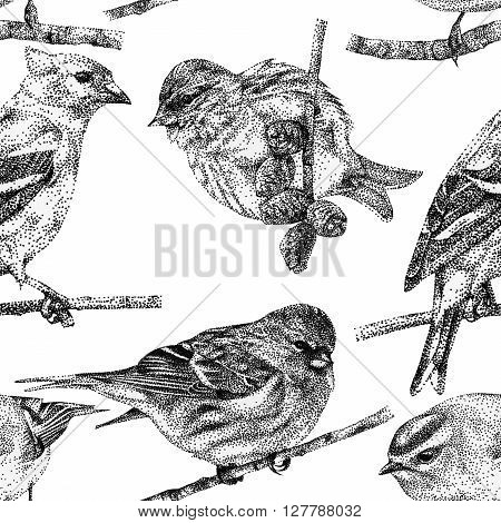 Seamless pattern with different birds drawn by hand with black ink. Graphic drawing pointillism technique. Can be used for pattern fills wallpapers web page surface textures