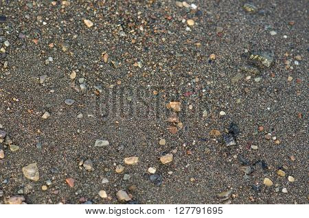 Texture topic: Wet sea sand with sea rocks on the shore shot