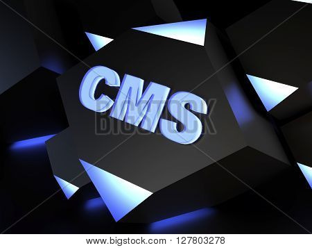 CMS {Content management system} - computer generated image (3D render)