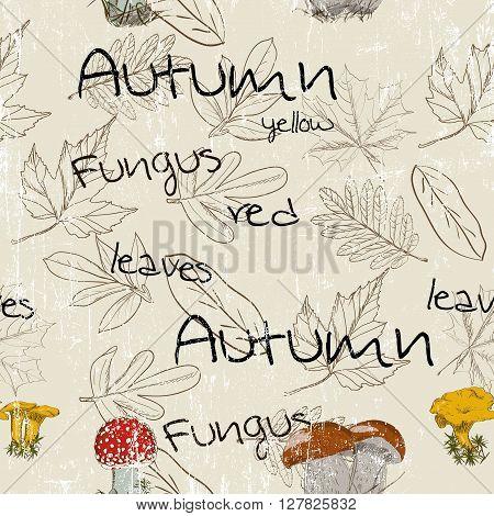 Seamless texture with autumn pattern. Vector illustration EPS8