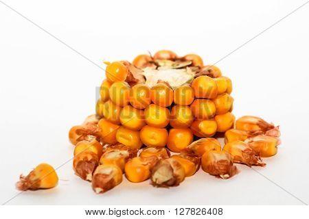 A slice of corn on the cob.