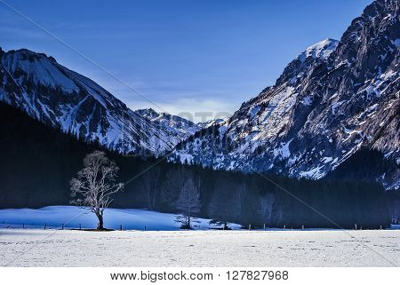 Landscape of snowy mountains in winter with lonely tree in foreground.Seewiesen,Austria.